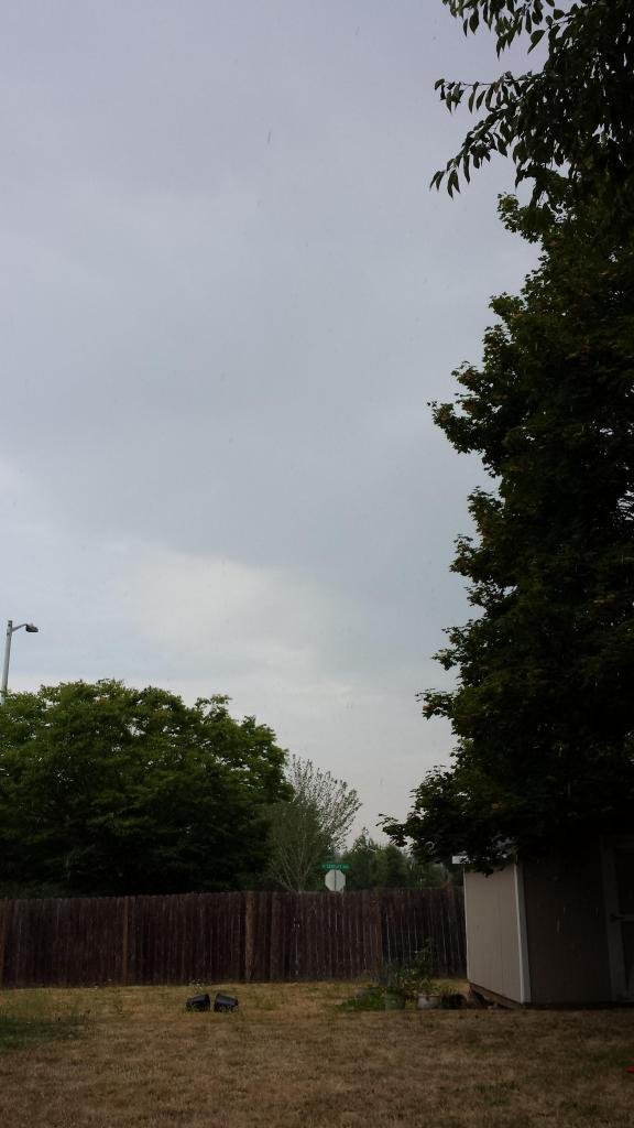 photo 2014-08-12104302_zps0b94b8c6.jpg